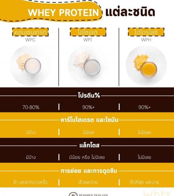 เวย์โปรตีน คืออะไร และจำเป็นต้องรับประทานหรือไม่ ?